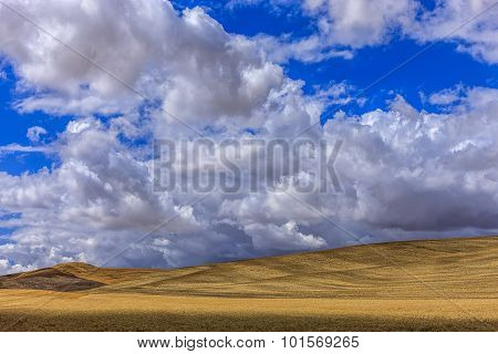 Rolling Hills In The Palouse.