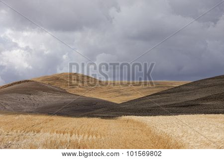 Rolling Hills Near Colfax, Washington.
