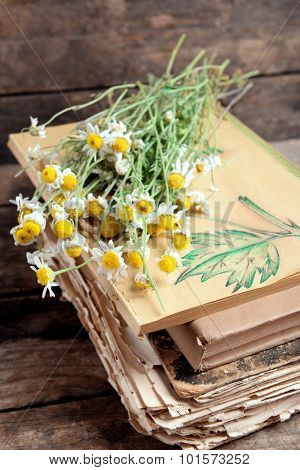 Old books with dry flowers on table close up
