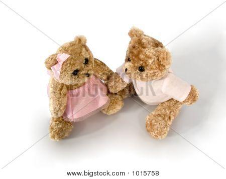 Bears_1