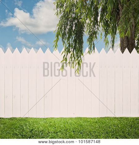 white fence on a back yard