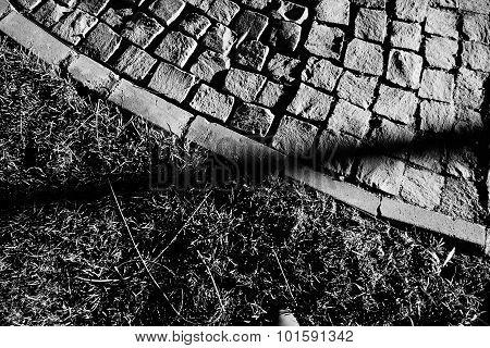 Grass Park Pavement