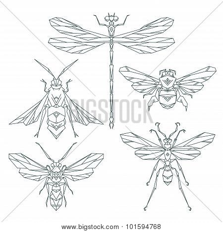 Insect icons, vector set. Abstract triangular style. bee, bumble bee , dragonfly, wasp