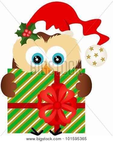 Christmas owl holding a Christmas gift