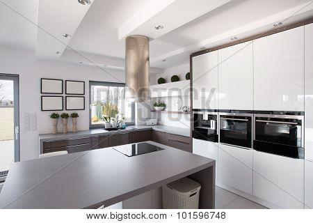 Contemporary Kitchen In Fashionable House