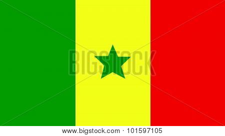 Senegal Flag For Independence Day And Infographic Vector Illustration.