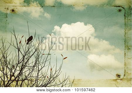 Abstract black bird on a branch with clouds