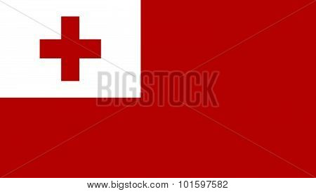 Tonga Flag For Independence Day And Infographic Vector Illustration.