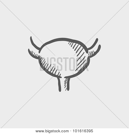 Urinary bladder sketch icon for web, mobile and infographics. Hand drawn vector dark grey icon isolated on light grey background.