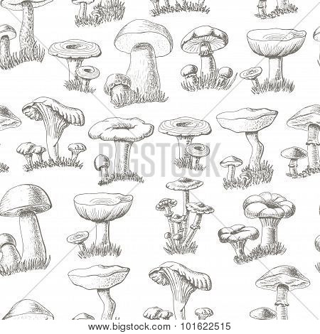 Seamless pattern with mushrooms on a white background