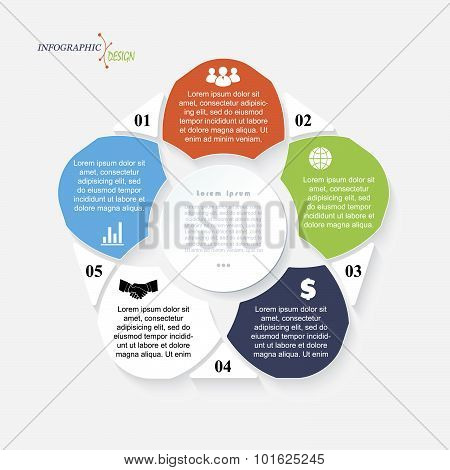 Vector Template Infographic For Business Project Or Presentation With 5 Segments Can Be Used For Web