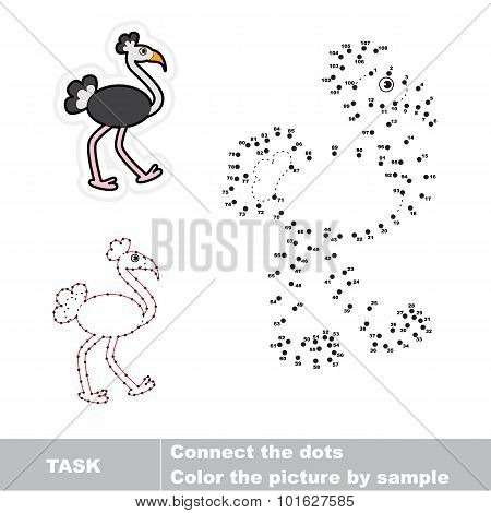 Join dots and find the ostrich.