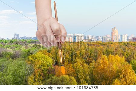 Paintbrush Paints Yellow Autumn Forest From Green