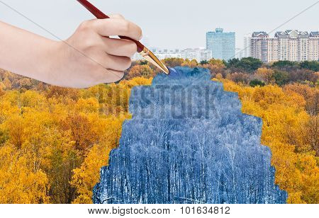 Blue Winter Forest From Yellow Autumn Forest