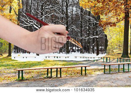 Paintbrush Paints Black Oak Trunks In Snowy Forest
