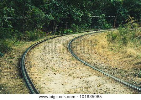 Tram Rails Along The Green Trees