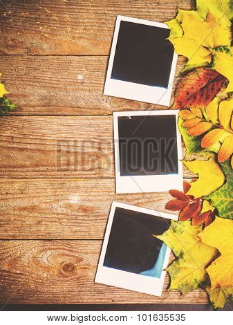 Autumn background with colorful leaves on rustic wooden board. Creating fall season memories with retro photo cards of photo frames. Thanksgiving and Halloween holidays concept. Copyspace