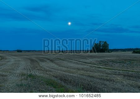 Beautiful After Harvest Field At Night.