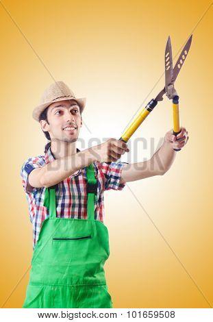 Man gardener with shears on white
