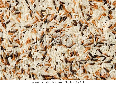Detail Of Uncooked Mix Rice Grains Background