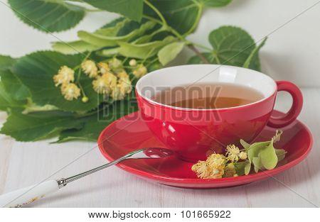 Red Cup Of Linden Tea