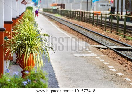 Rail Road Tracks In Thailand On Background.