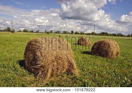 Green Field With An Haystacks Under Cloudy Sky