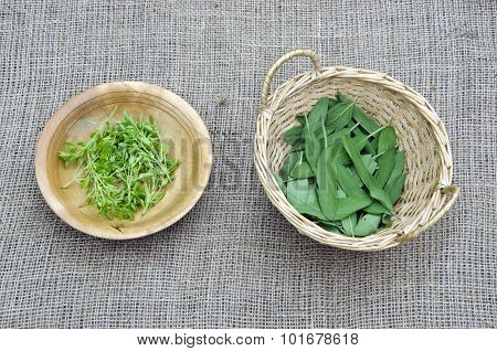 Basil And Sage On Linen  In Wooden Bowls