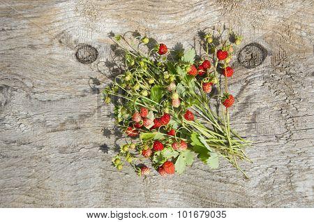Bundle Of Wild Strawberries On Wooden Background