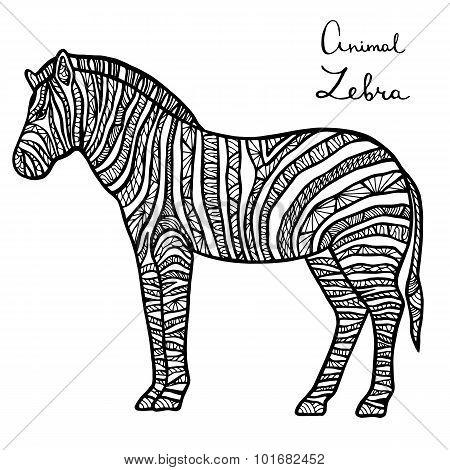 Stylized Vector Zebra, Zentangle Isolated On White Background.