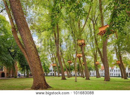 Bruges park of  Begijnhof