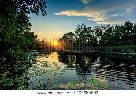 Evening sunset scene on river