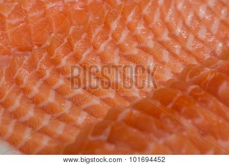 Sliced Fresh Salmon Sushi