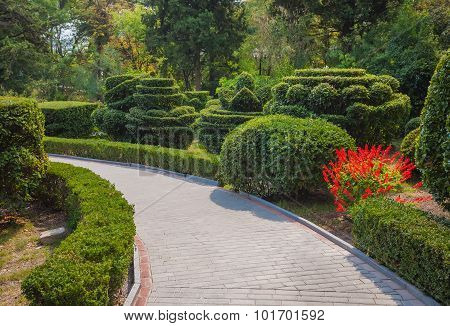 Beautiful garden with hedges