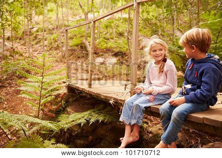 Young siblings sitting on wooden bridge in a forest