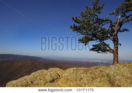 Blue Ridge Mountains Vista at Ravens Roost