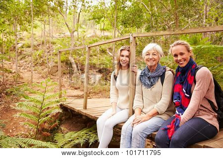Three generations of women sitting in a forest, portrait