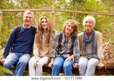 Grandparents and teens sitting on a bridge in a forest