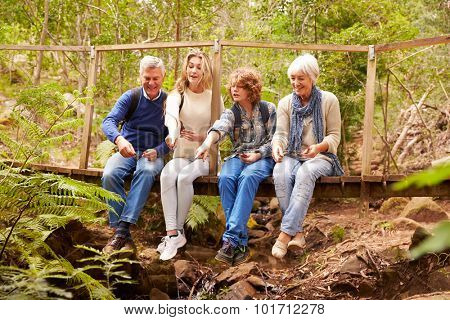 Grandparents and teens playing on a bridge in a forest
