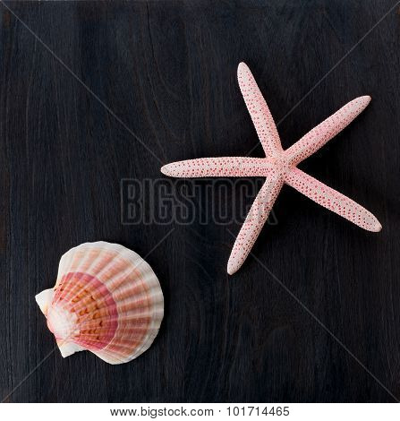 Starfish And Shell On Rustic Wooden Boards