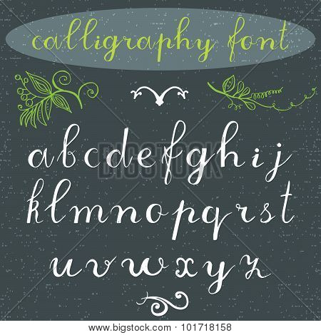 Alphabet Letters Lowercase, Hand Drawn Calligraphy Font. Vector Alphabet. Hand Written Letters Of Th