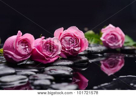 Set of four pink rose with therapy stones