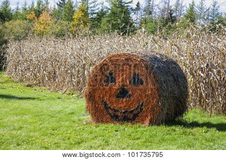 Halloween decorated straw bale on a farm in rural Prince Edward Island, Canada.