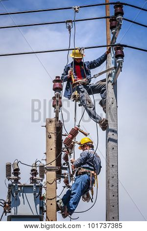 Electricians Working Together To Replace The Electrical Insulator