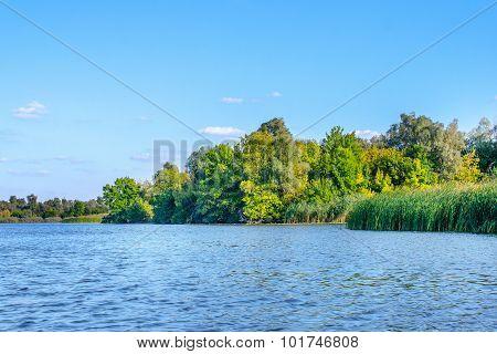 Landscape Image Of A Large River Shore Vegetation