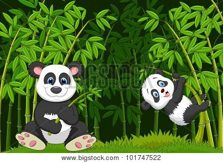 Cartoon mom and baby panda in the climbing bamboo tree