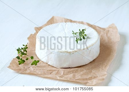 Camembert cheese traditional french gourmet food with thyme on parchment
