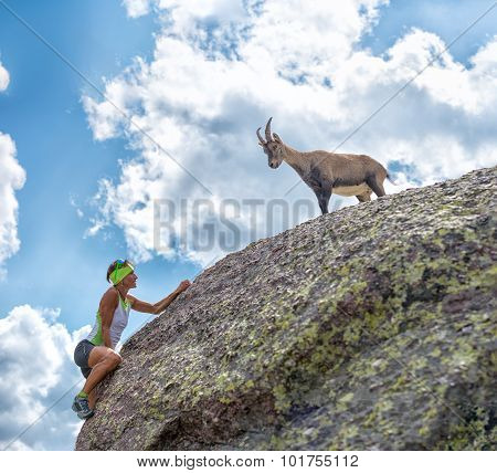 Woman Climber Encounters An Ibex