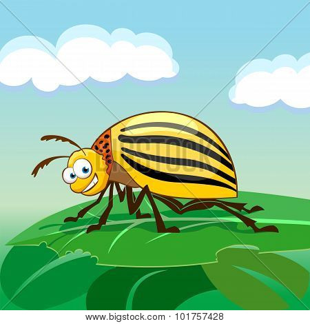 Cartoon Character Colorado Potato Beetle