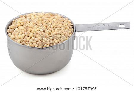 Pearl Barley In A Measuring Cup